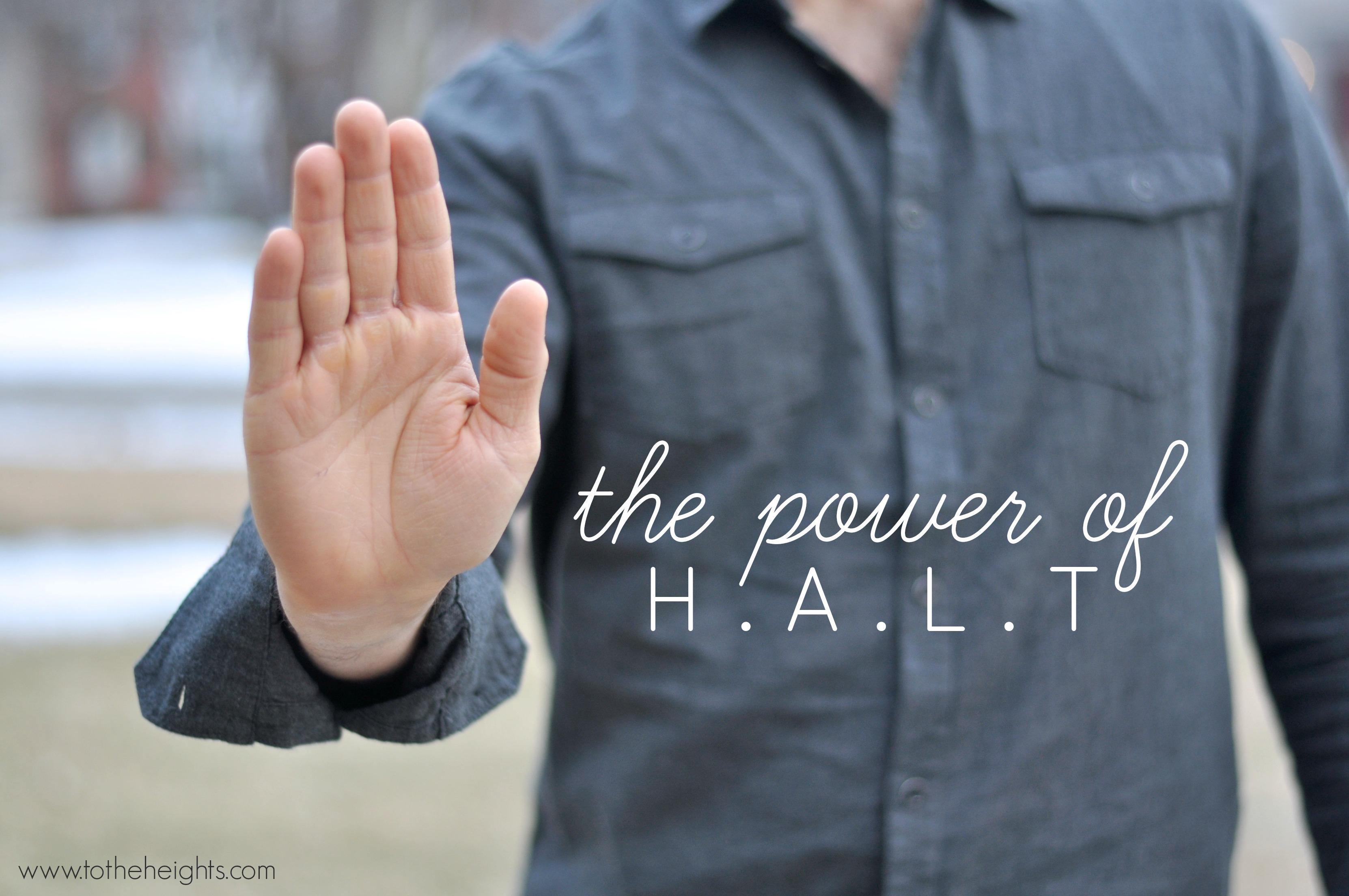 the-halt-concept