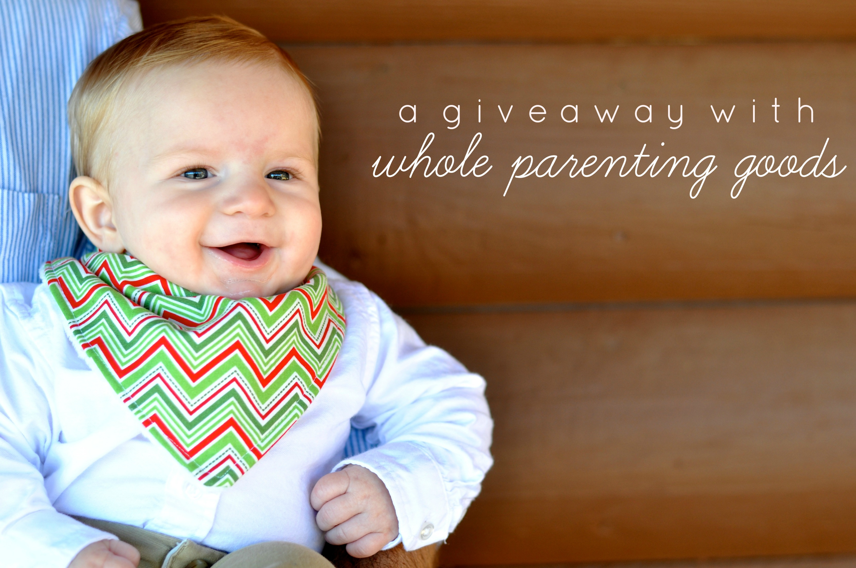 whole-parenting-bib-giveaway